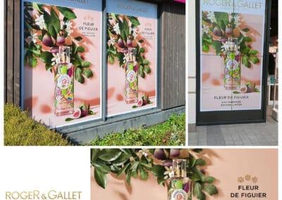 Innovation R&G Fleur de Figuier